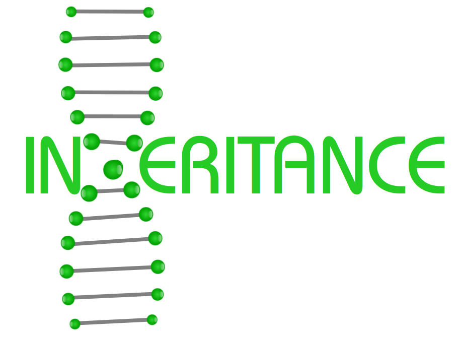 Inheritance as DNA