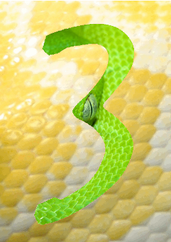 Python 3 green and yellow